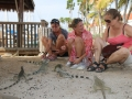 In contact with the iguanas