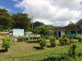 Soufriere libary